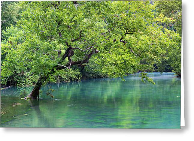 River Flowing Through A Forest, Ozark Greeting Card by Panoramic Images