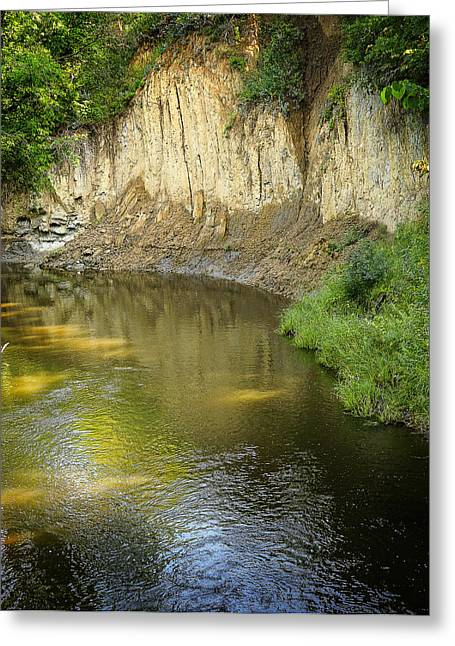River Flowing Through Deep Woods Greeting Card