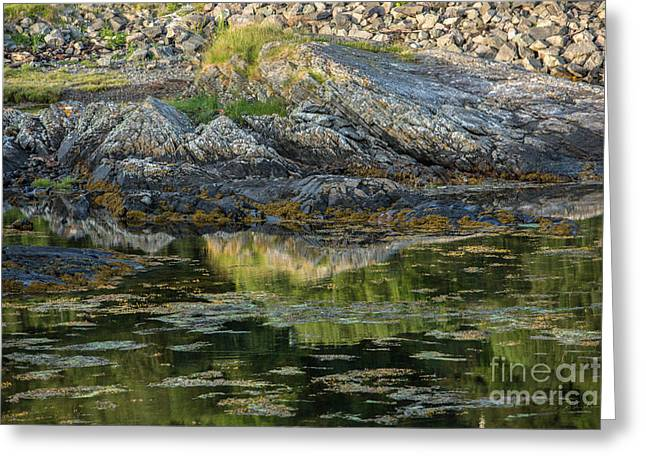 Rocks At Scotland Loch Greeting Card by Iris Richardson