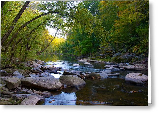 Rocky Wissahickon Creek Greeting Card by Bill Cannon