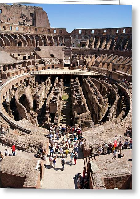 Roman Colosseum. Greeting Card by Mark Williamson