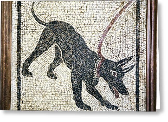 Roman Guard Dog Mosaic Greeting Card
