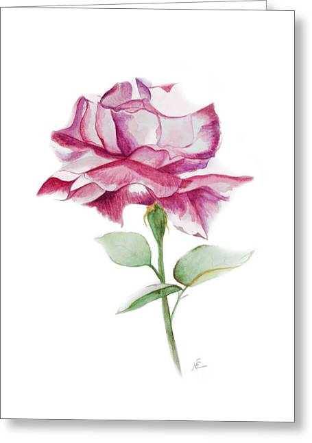 Rose 2 Greeting Card by Nancy Edwards