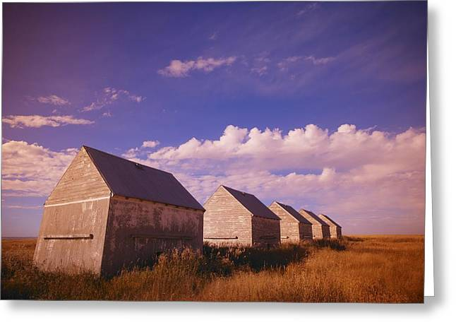 Row Of Old Farm Houses Greeting Card by Kelly Redinger