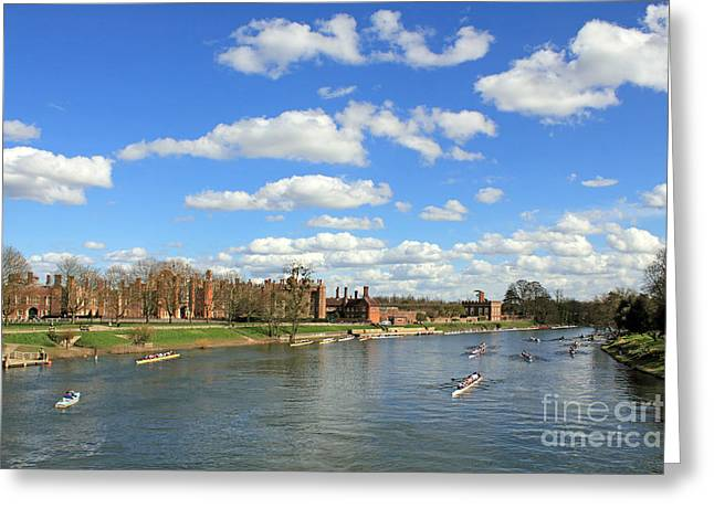 Rowing On The Thames At Hampton Court Greeting Card