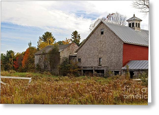 Rural View Greeting Card