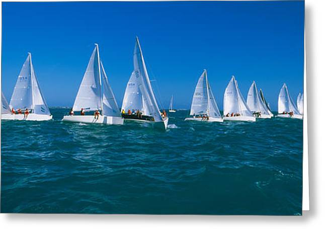 Sailboat Racing In The Ocean, Key West Greeting Card