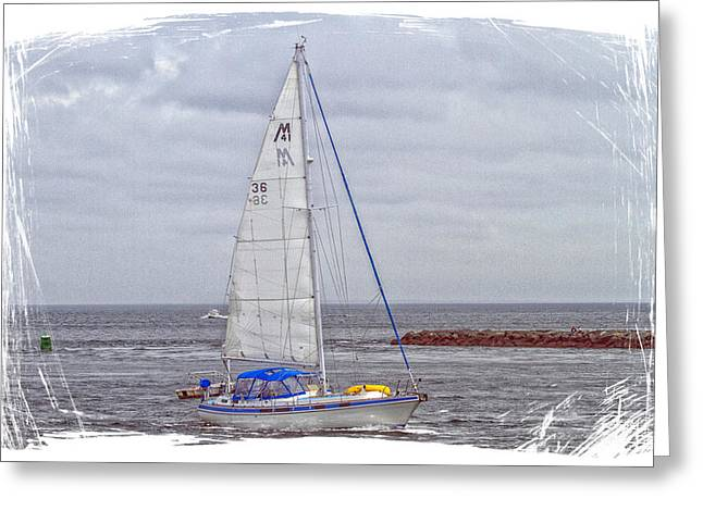 Sailing Greeting Card by Constantine Gregory