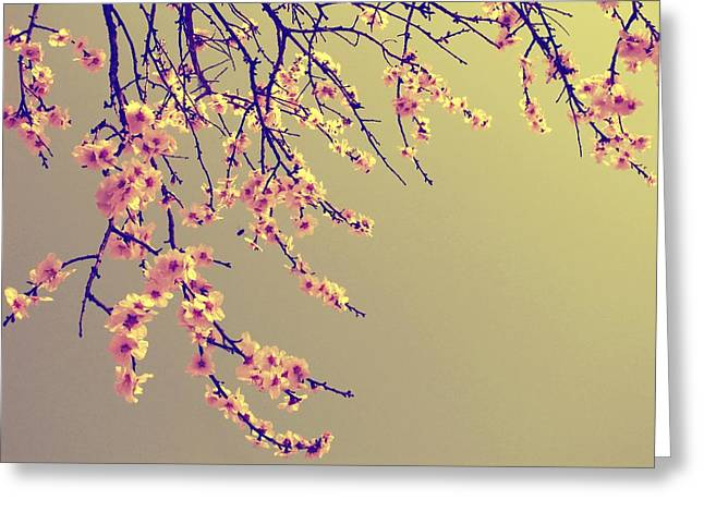 Sakura Greeting Card by Marianna Mills