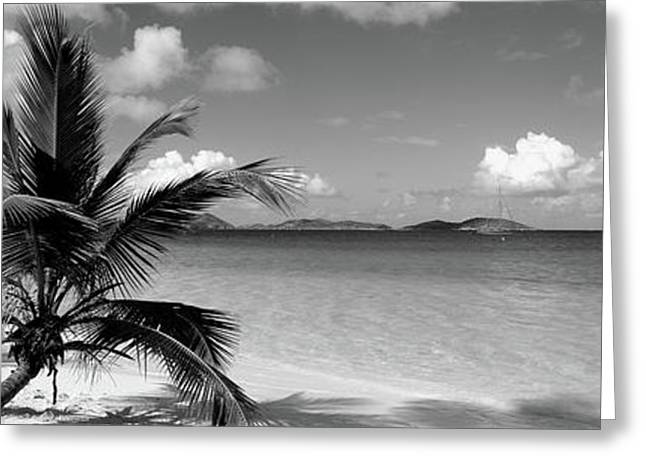 Salomon Beach Us Virgin Islands Greeting Card