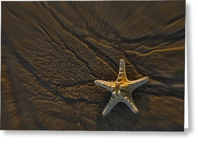 Sand Prints And Starfish II Greeting Card by Susan Candelario