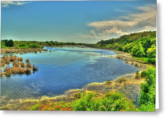 Sandpiper Pond Greeting Card by Ed Roberts