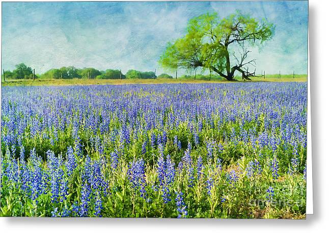 Sandy Bluebonnets Greeting Card