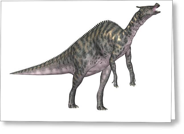 Saurolophus Dinosaur Greeting Card