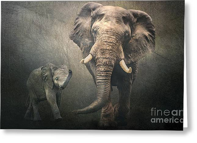 Greeting Card featuring the photograph Save The Elephants by Brian Tarr