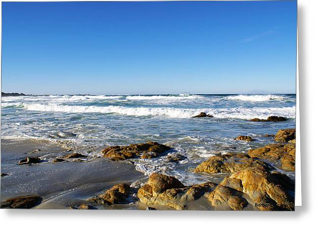 Scenic View Along 17 Mile Drive Greeting Card by Barbara Snyder