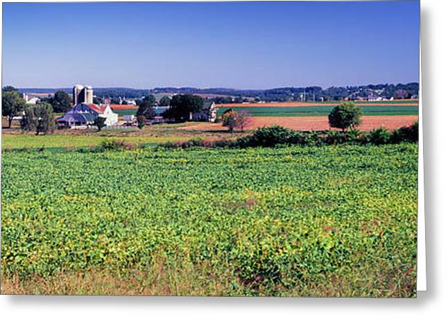 Scenic View Of A Farm, Pennsylvania Greeting Card