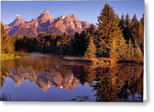 Schwabacher Landing Greeting Card by Leland D Howard