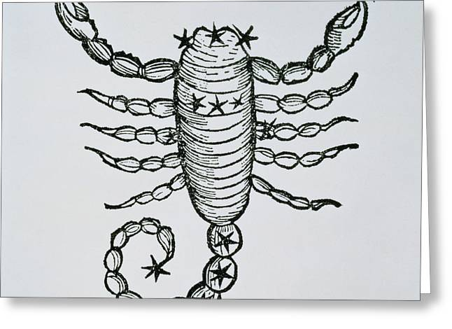 Scorpio Greeting Card by Italian School