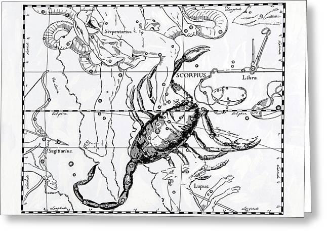 Scorpio Greeting Card by Detlev Van Ravenswaay