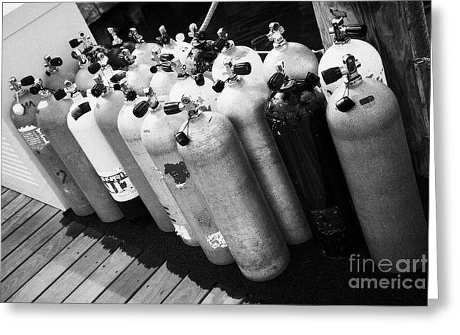 Scuba Air Tanks Lined Up On Jetty To Be Filled In Harbour Key West Florida Usa Greeting Card by Joe Fox