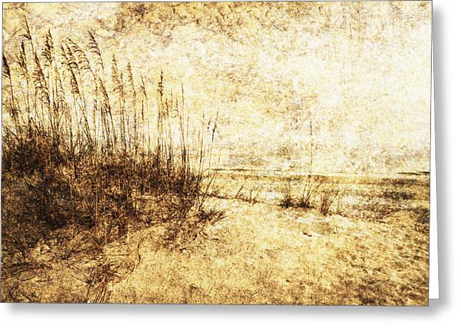 Sea Oats 4 Greeting Card by Skip Nall