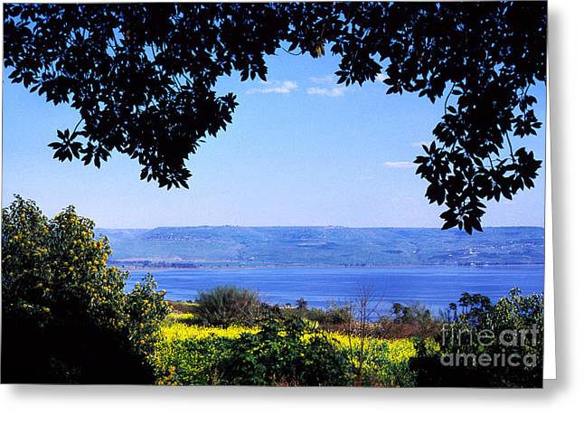 Sea Of Galilee From Mount Of The Beatitudes Greeting Card