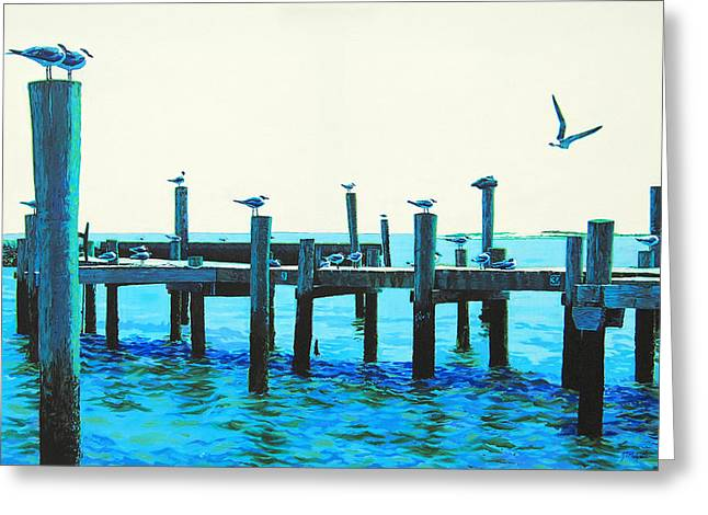 Seagulls Greeting Card