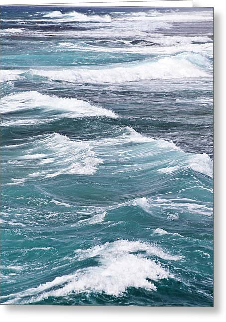 Seascape Greeting Card by Daisy Gilardini