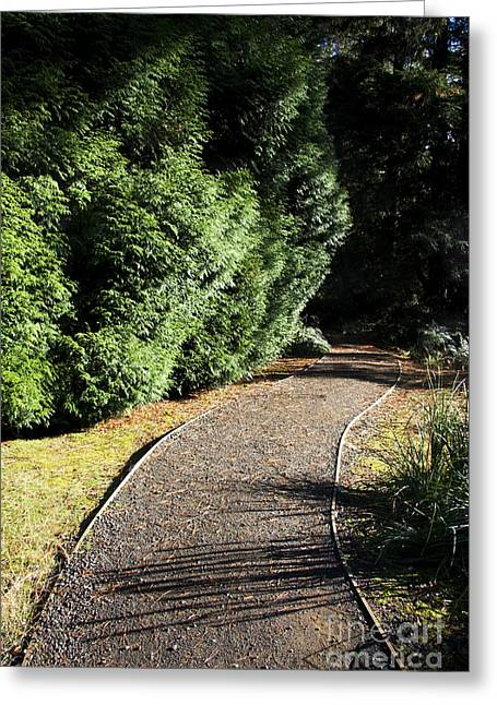 Secret Garden Path Greeting Card by Jorgo Photography - Wall Art Gallery