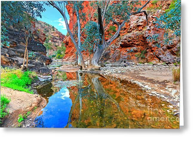 Serpentine Gorge Central Australia Greeting Card by Bill  Robinson
