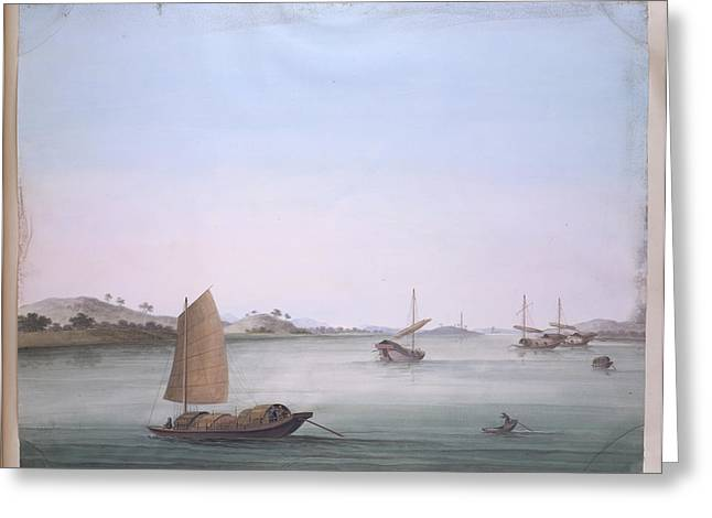Several Boats Greeting Card