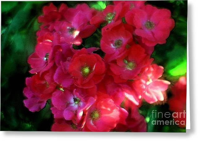 Shades Of Red Greeting Card by Mary Lou Chmura