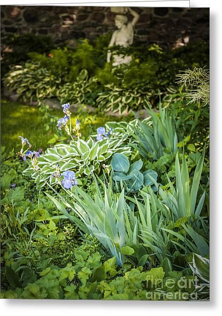 Shady Garden Greeting Card by Elena Elisseeva