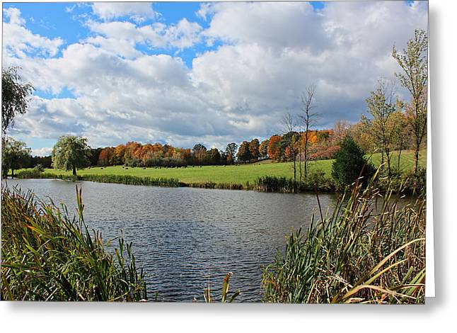 Shelburne Vermont Greeting Card
