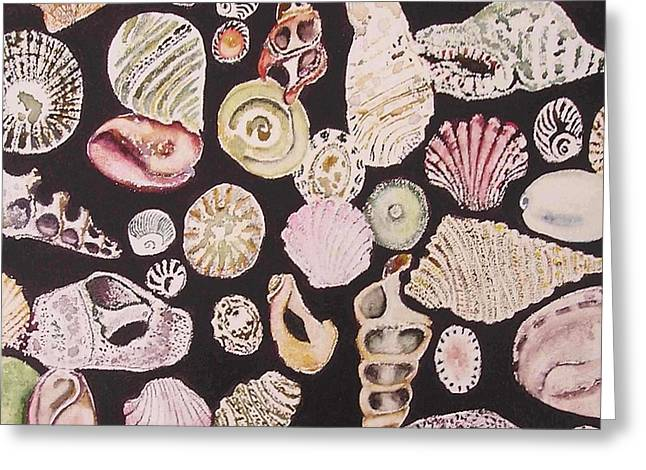 Shells By C . 1.3 Greeting Card by Cheryl Miller