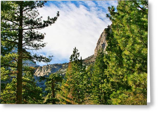 Sierra November Greeting Card