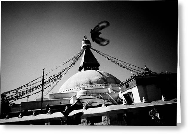 Silhouette Boudhanath Giant Buddhist Stupa In Kathmandu Himalaya Nepal  Greeting Card