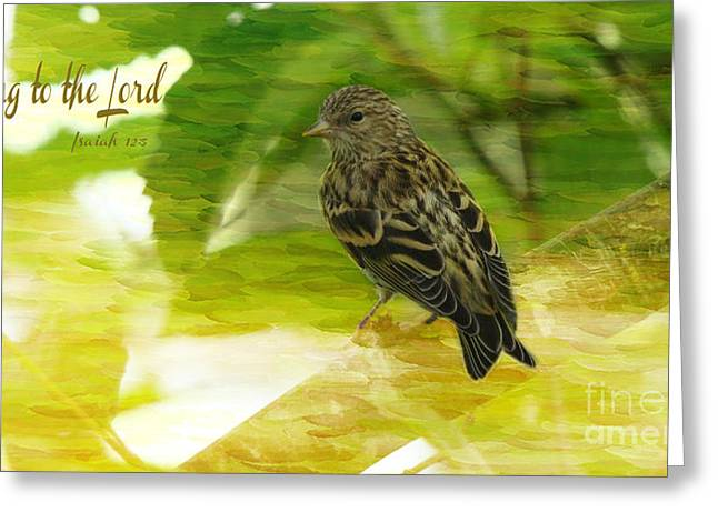 Sing To The Lord Greeting Card by Beverly Guilliams