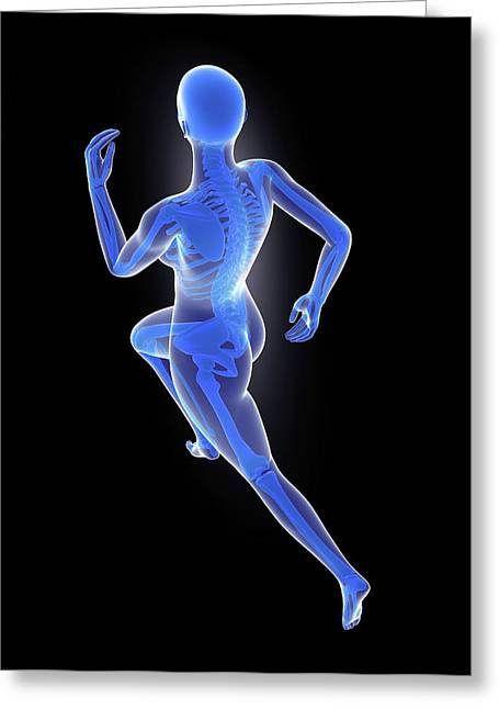 Skeleton Of Runner Greeting Card