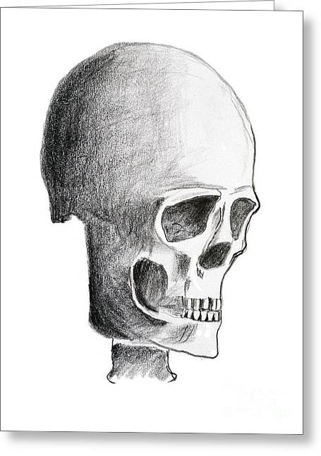 Skull Greeting Card by Michal Boubin