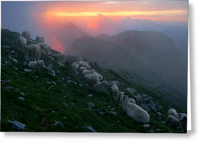 Slovenian Sunset Greeting Card by Graham Hawcroft pixsellpix