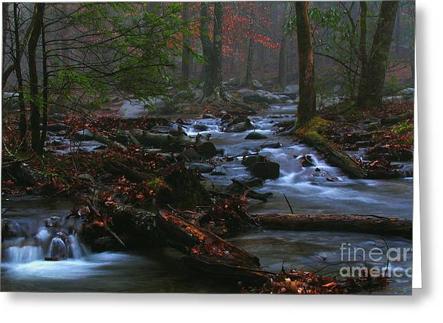 Smoky Mountain Color Greeting Card by Douglas Stucky