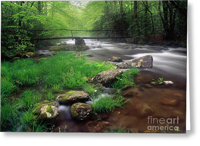 Smoky Mountain Stream 2009 Greeting Card