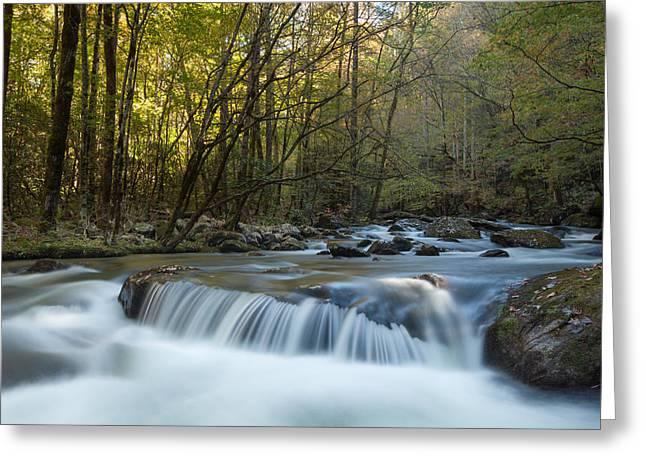 Smoky Mountain Stream Greeting Card by Doug McPherson