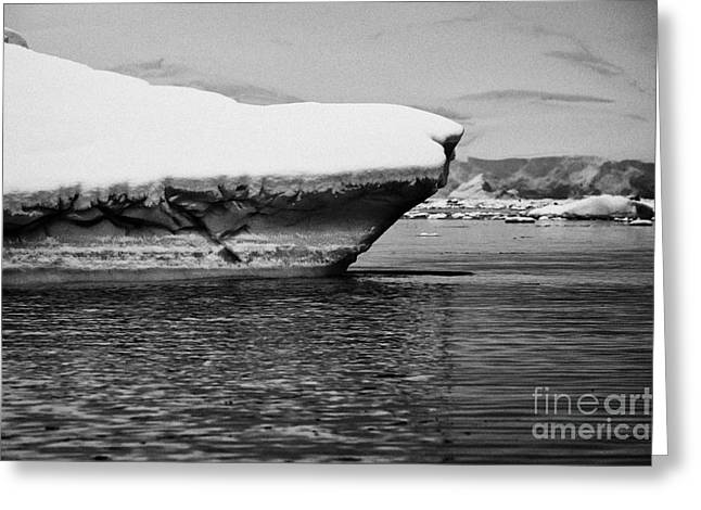 snow covered ice shelf falling into the sea at Fournier Bay Antarctica Greeting Card by Joe Fox
