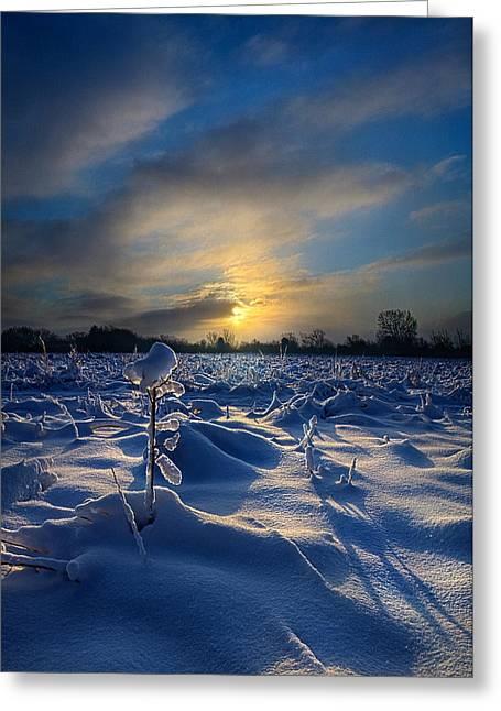 Snow Way Greeting Card by Phil Koch