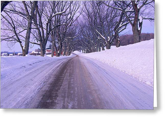 Snowy Country Road Greeting Card by Panoramic Images