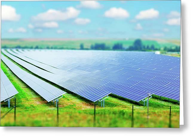 Solar Farm Greeting Card by Wladimir Bulgar