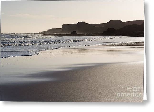 South Shields Beach Greeting Card by Ray Pritchard